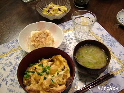 2008_10_28_emi1