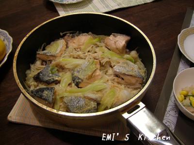 2008_10_28_emi3