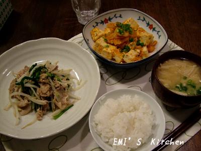 2008_11_17emi5