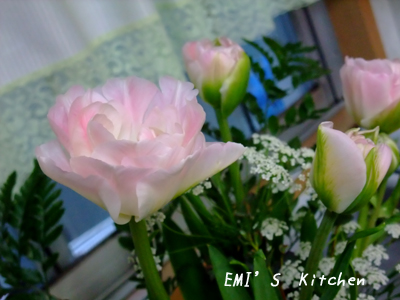 2009_03_07_emi