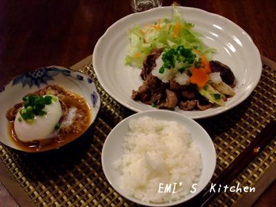 2009_03_08_emi3