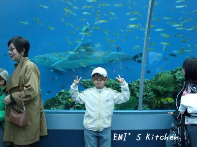 2009_04_03_emi5